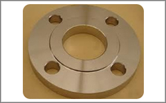 Stainless Steel Raised Face Flanges, SS Raised Face Flanges